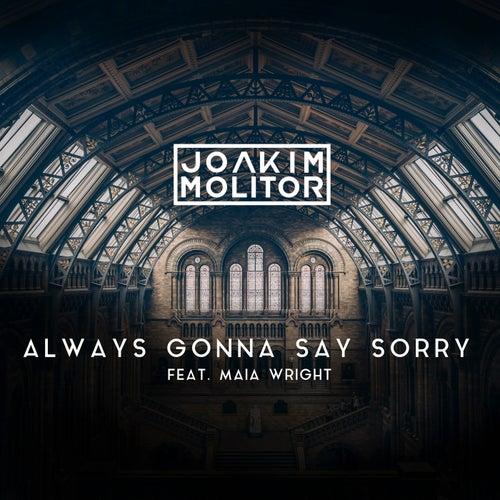 Always Gonna Say Sorry de Joakim Molitor