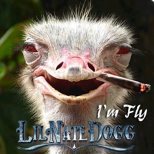 I'm Fly by Lil Nate Dogg