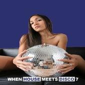 When House Meets Disco, Vol. 7 de Various Artists