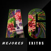 Mejores Exitos AG by Various Artists