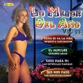 Lo Mejor del Año (Vol.25) by Various Artists