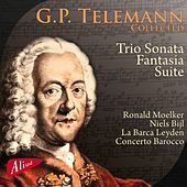 G.P. Telemann - Collected by Various Artists