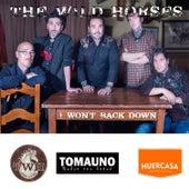 I Won't Back Down by Wild Horses