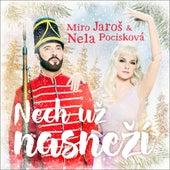 Nech uz nasnezi by Various Artists