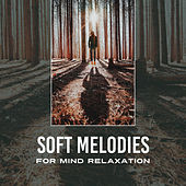 Soft Melodies for Mind Relaxation by Reiki