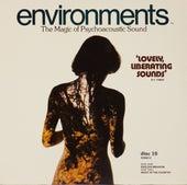 Environments 10 by Environments