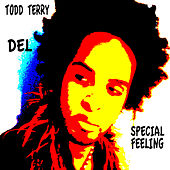 Special Feeling by Todd Terry