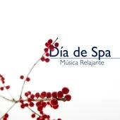 Día de Spa: Musica Relajante de Spa, Musica Instrumental Oriental para Tratamiento Facial, Tratamientos de Belleza, Balneario, Sauna de Musica Relajante
