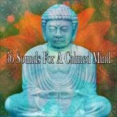 56 Sounds For A Calmed Mind von Entspannungsmusik