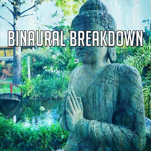 Binaural Breakdown by Binaural Beats Brainwave Entrainment