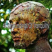 48 Surroundings Of Tranquility von Entspannungsmusik