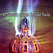 42 Naturally Attuned Spiritual Tracks de Nature Sounds Artists