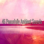 45 Peacefully Ambient Sounds de Zen Meditation and Natural White Noise and New Age Deep Massage