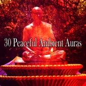 30 Peaceful Ambient Auras de Meditación Música Ambiente