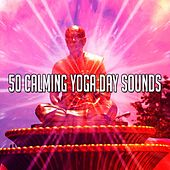 50 Calming Yoga Day Sounds by Yoga Music