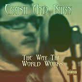 The Way the World Works by Crash and Burn