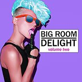 Big Room Delight, Vol. 2 by Various Artists