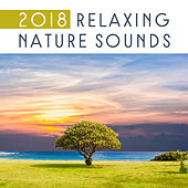 2018 Relaxing Nature Sounds by Deep Sleep Relaxation