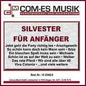 Silvester für Anfänger de Various Artists