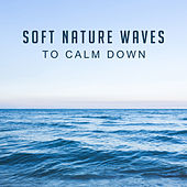Soft Nature Waves to Calm Down de Nature Sound Collection