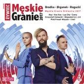 Męskie Granie 2017 by Various Artists