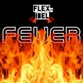 Feuer von Flex-Ibel