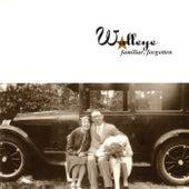 Familiar, Forgotten by Walleye