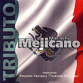 Tributo Mariachi Mejicano by Various Artists
