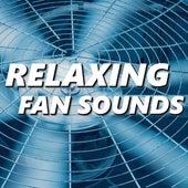 Relaxing Fan Sounds by Fan Sounds