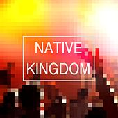 Reckless Love (Of God) by Native Kingdom