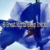 43 Great Nights Sleep Tracks by Deep Sleep Relaxation