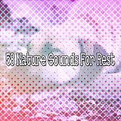 58 Nature Sounds For Rest by Bedtime Baby