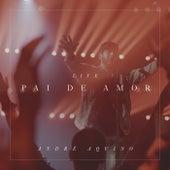 Pai de Amor (Live) de André Aquino
