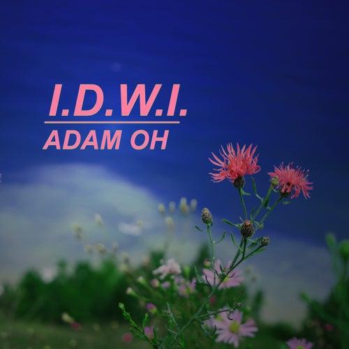I.D.W.I. by Adam O