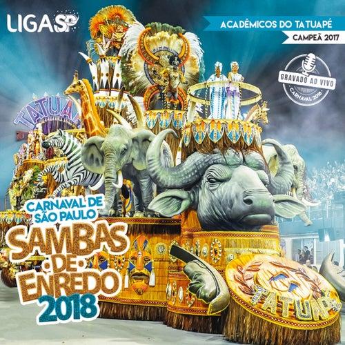 Carnaval Sp 2018 - Sambas de Enredo das Escolas de Samba de São Paulo (Ao Vivo) de Various Artists