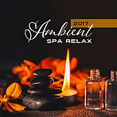 2017 Ambient Spa Relax von Soothing Sounds