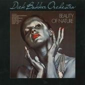 Beauty of Nature de Dick Bakker Orchestra