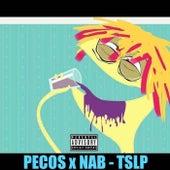 PECOS x NAB - TSLP von Distrikt