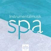Spa Instrumentalmusik: Autogenes Training Übungen, Ihre beste Quelle der Entspannung von Entspannungsmusik