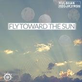 Fly Toward The Sun by Various
