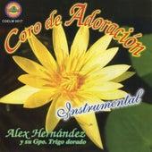 Coros de Adoracion by Alex Hernandez