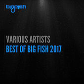 Best of Big Fish 2017 by Various Artists