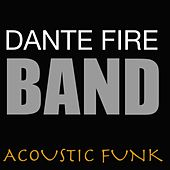 Acoustic Funk de Various Artists