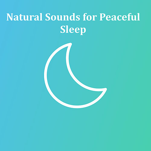 7 Soothing and Relaxing Sounds, Natural Rain for Sleep, Babies and White Noise de Baby Sleep Sleep