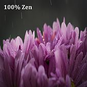 09 Tracks for Complete Zen: Nature Sounds, Rain Sounds and Relaxation Sounds by Zen Music Garden