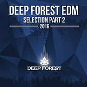 Deep Forest EDM Collection, Pt. 2: 2016 - EP by Various Artists