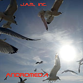 Andromeda by Inc. J.A.M.