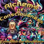 Alchemy Of Consciousness - EP de Various Artists