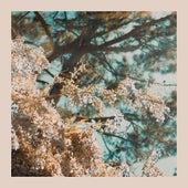 I'm Here (Spring Version) by Rosemary & Garlic