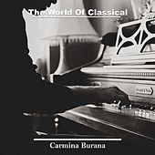 The World Of Classical Music by Various Artists